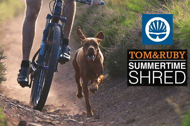 Summertime shred with Ruby the trail dog