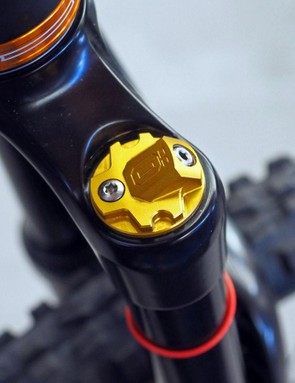 The Torx-head bolt is likely a bleed port to evacuate any pressurized air that might accumulate inside the coil spring-backed internal floating piston
