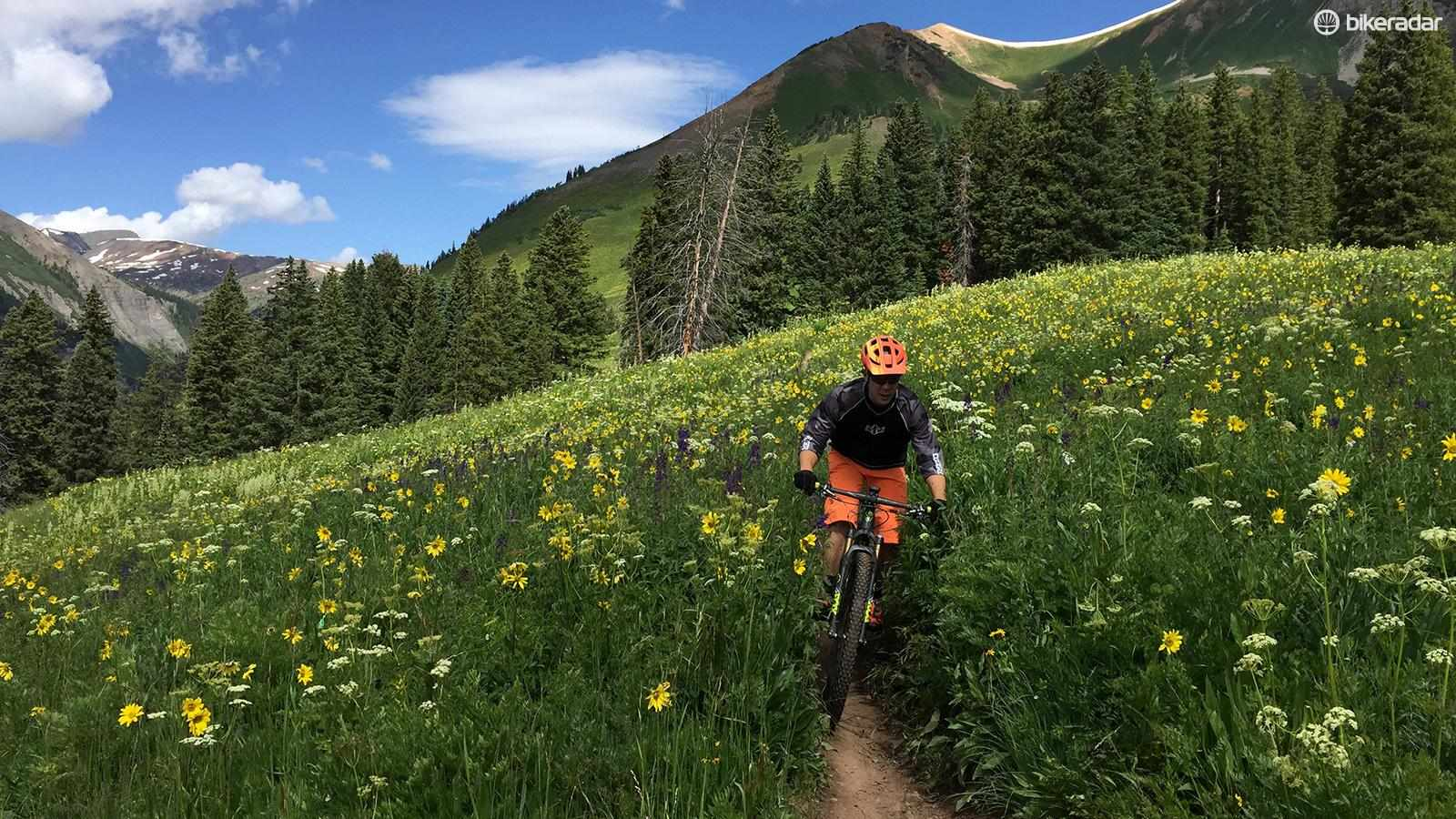 There's a good reason why we all love singletrack. You're only hurting yourself by cutting corners and creating your own lines