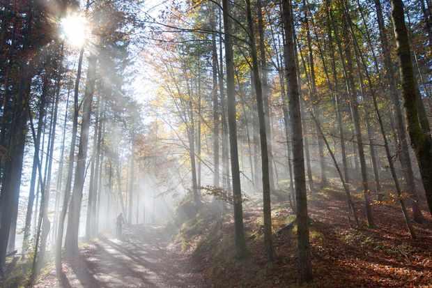 Send us your best autumn riding photos