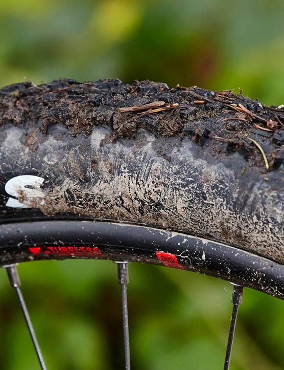The supple suspension delivers more grip than expected from the low-profile Maxxis treads