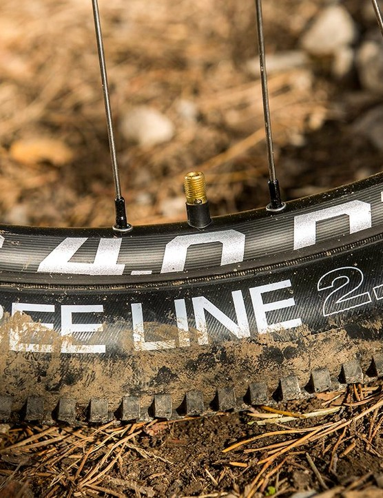WTB's supple, fast rolling BeeLine tyres and lightweight wheels amplify the gliding ride of the flattened SAVE rear stays
