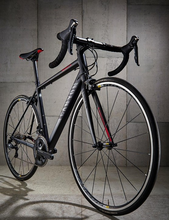 Geometry is borrowed from the carbon Endurace CF