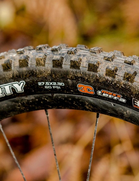 The Maxxis Shorty is a superb all-conditions tyre. Well, for the UK anyway...