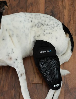 Leatt's new Airflex Pro knee pads provide knee and upper shin protection, or whole leg protection if you're a dog