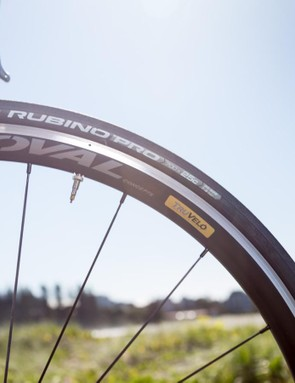 Vittoria 25c Rubino Pro tyres aren't the lightest or most supple rubber, but they're a reliable workhorse option