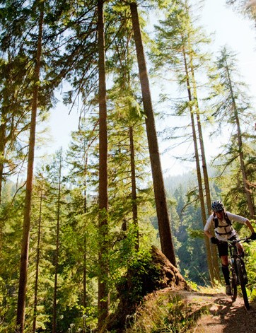 The North Umpqua trail in Oregon would be a dang fine way to meet the challenge