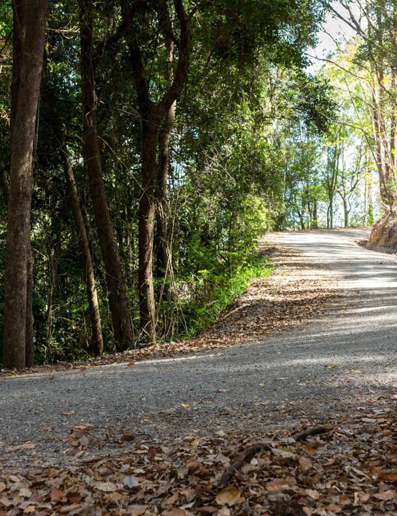 Riding road bikes on gravel has helped us see the light when it comes to road tubeless