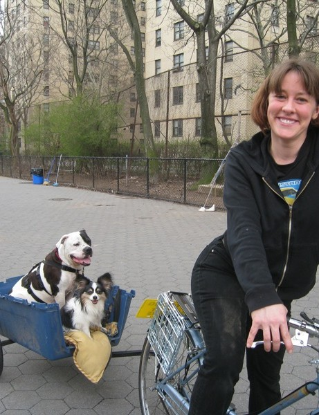 Two-wheeled canine heaven in NYC.