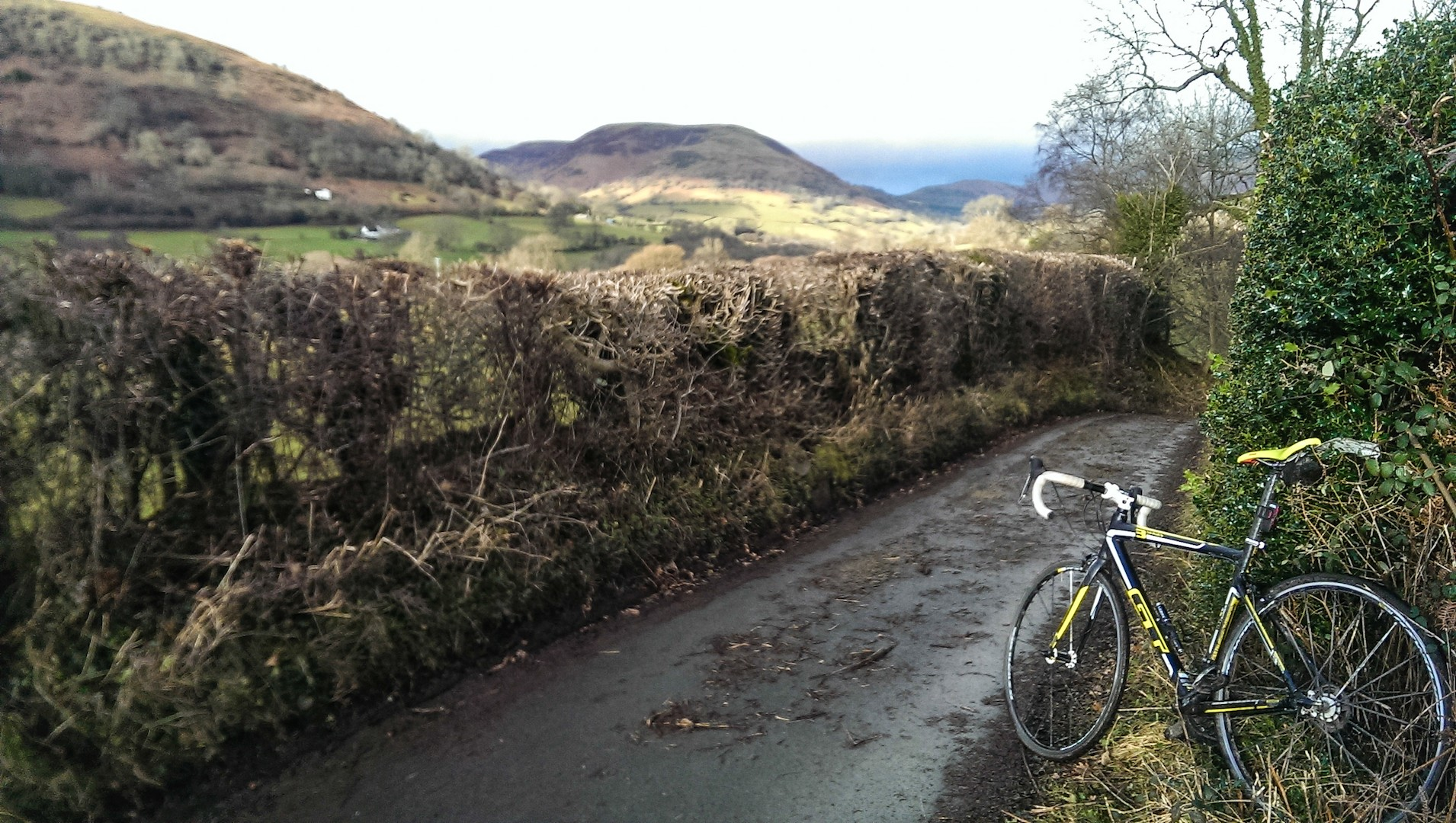 If you don't fancy road discs yet, Welsh lanes will change your mind…