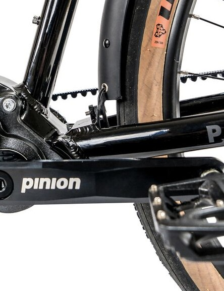 The Pinion gearbox has 12-speed tucked inside of it