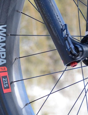 The 80mm Bonty Wampa rims are tubeless ready and oh yeah they're carbon too