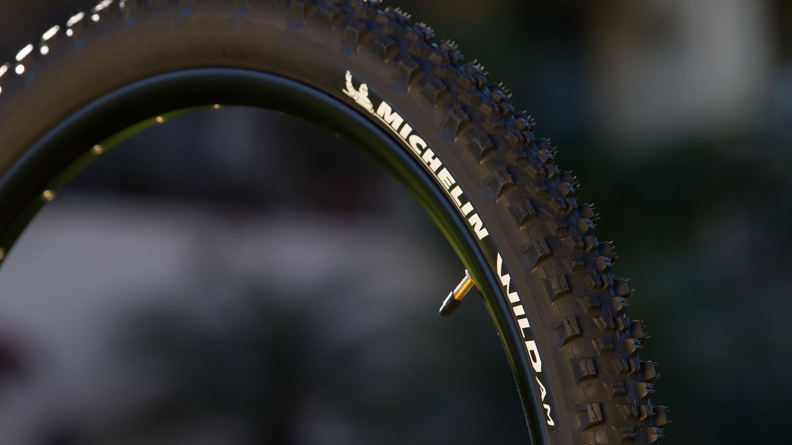 The Wild AM is an enduro ready tire