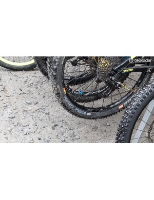 These prototype Schwalbe tyres were hiding in plain sight