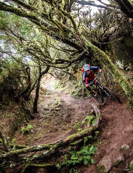 Madeira has a lot to offer — I rode with Freeride Madeira