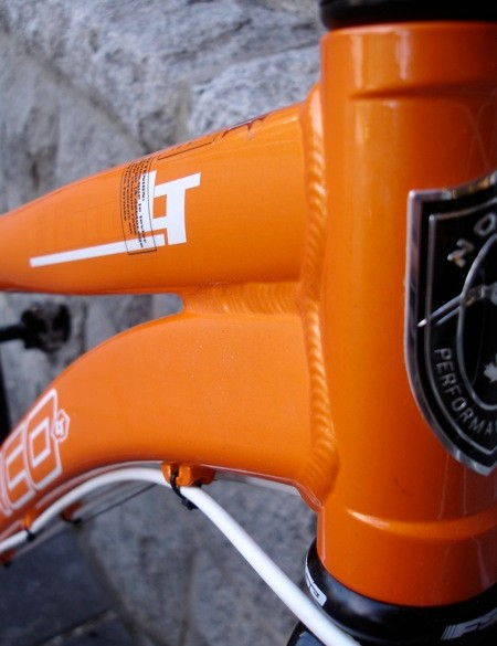 Neat head tube detail