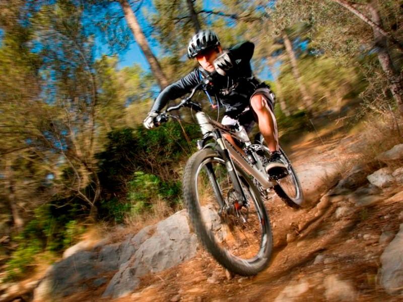 Merida has unveiled its 2009 range of bikes