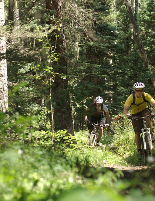 Fuel EX test pilots ride the Hermosa Creek Trail
