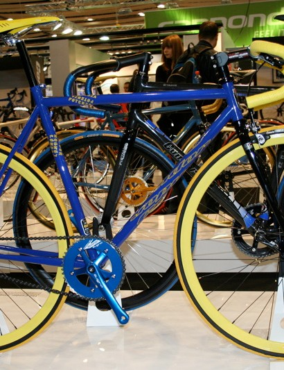 … while the blue and yellow really stands out!