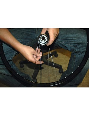 Count another seven holes clockwise from the spoke in the non-disc side flange and then insert a spoke downwards through that seventh hole.