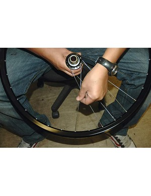 With the hub disc side up, put a spoke downwards in the hole two spaces clockwise from the one already downwards in the hub.