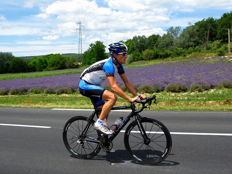 Martyn passes through the lavender fields of Provence