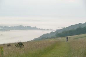 Morning mist below Harting Down