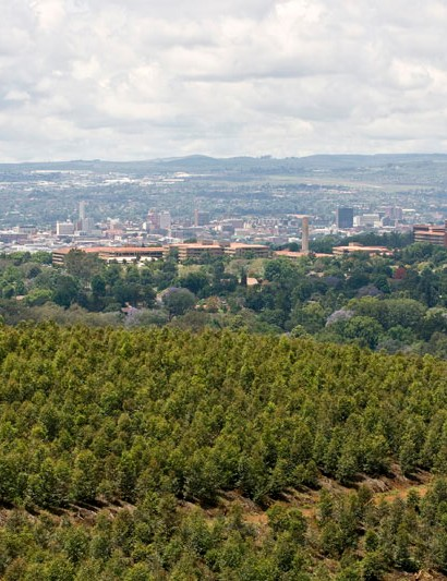 The highest section of the cross-country course offers a good view of the city of Pietermaritzburg.
