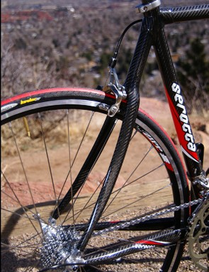 Gracefully curved seat stays produce a remarkably compliant and surefooted ride.