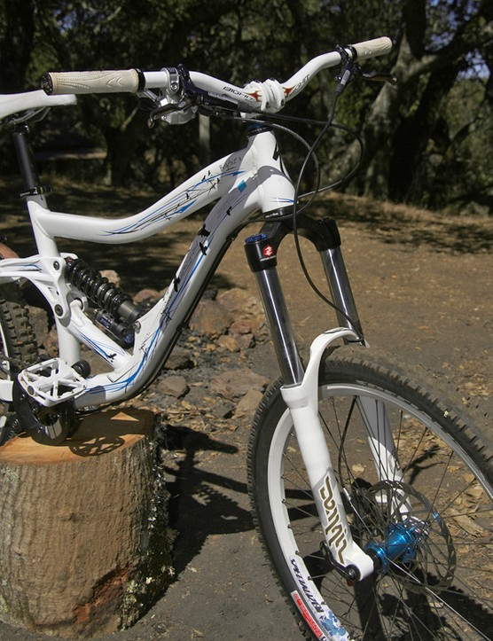 The 40mm-diameter steel stanchions on the RockShox Domain fork and the newly tapered-and-oversized 1 1/8