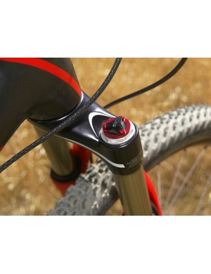 Specialized's 'Buddy System' houses both spring and damper units in one leg to cut down on redundant internal bits.