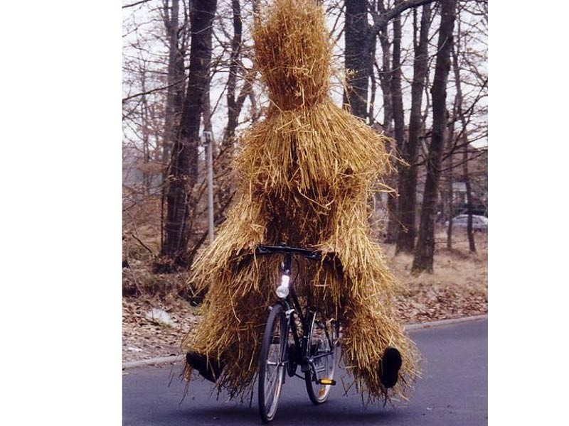 Things can get a bit strange in the Fens at this time of year