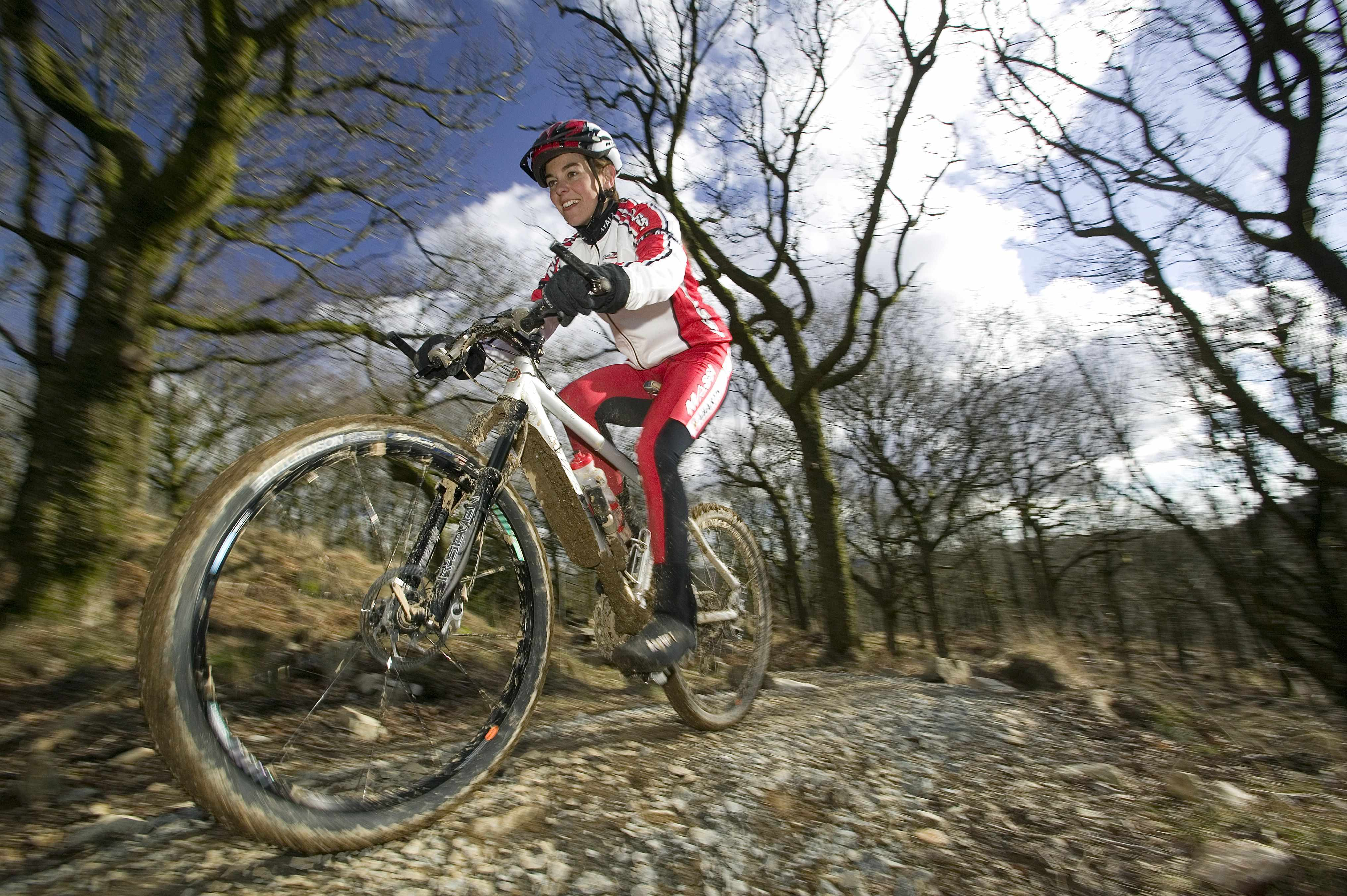 The Whinlatter trail follows the creation of a similar one in Grizedale