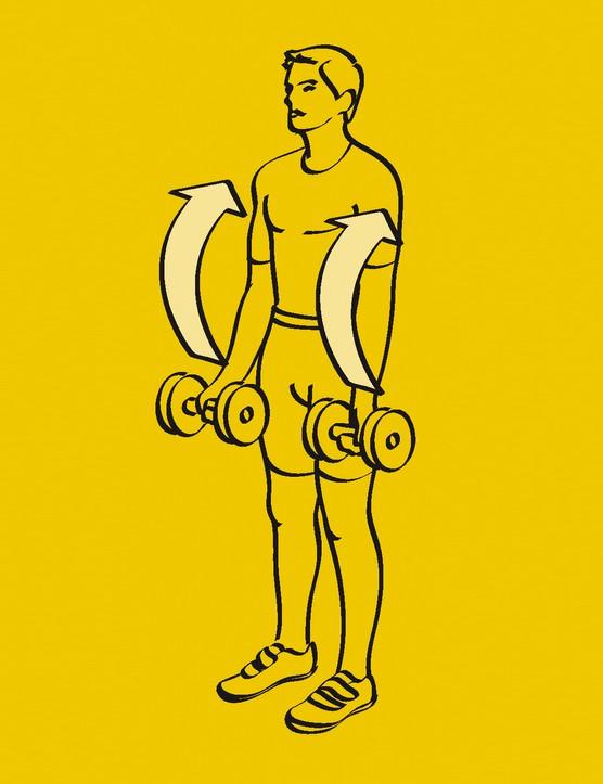 Arms like Arnie