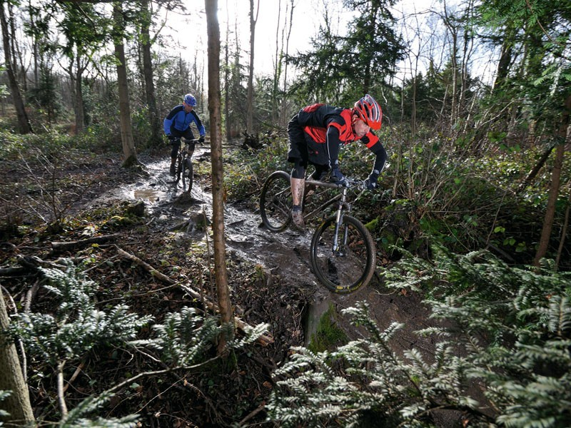 Titanium bikes are in their element being thrashed along technical singletrack