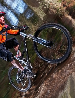 Lapierre Zesty: rangy and planted