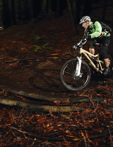 If you go down in the woods today - the Blur LT is the bike that'll handle anything you encounter