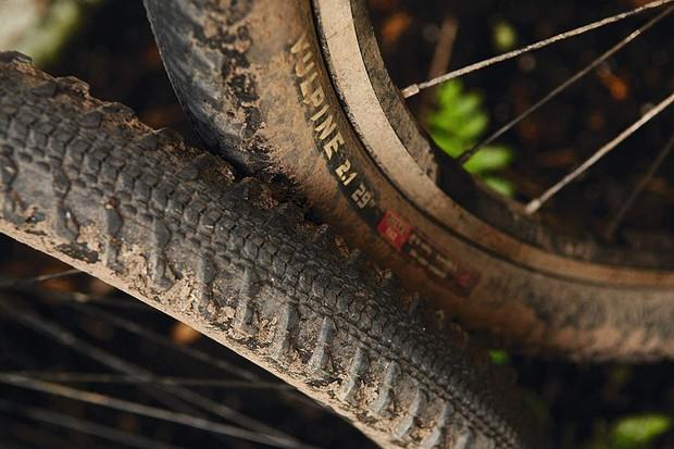 WTB Vulpine 29er Tyre