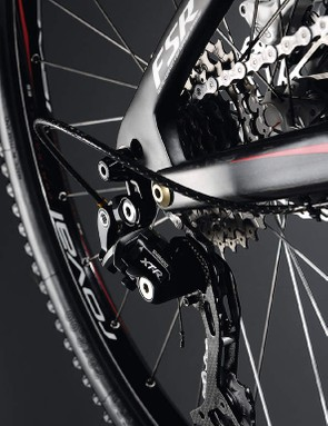 Carbon stays and a replaceable gear hanger boost practicality