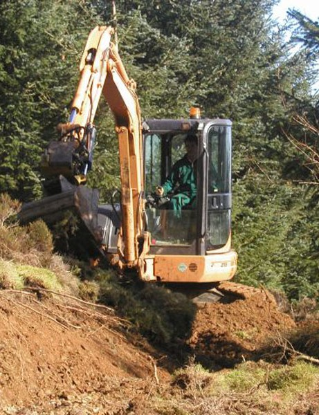 Work has started in Whinlatter Forest Park