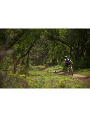 A shadier moment on the Hermosa Creek Trail