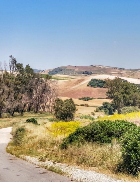 Andalusian hills