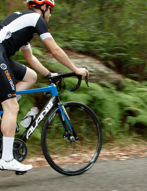 The Avanti Corsa offers a well balanced ride that won't disappoint
