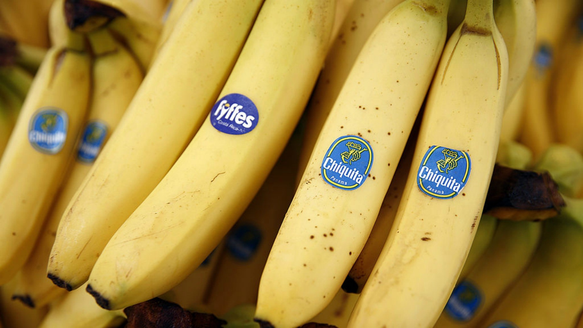 Bananas make a great snack