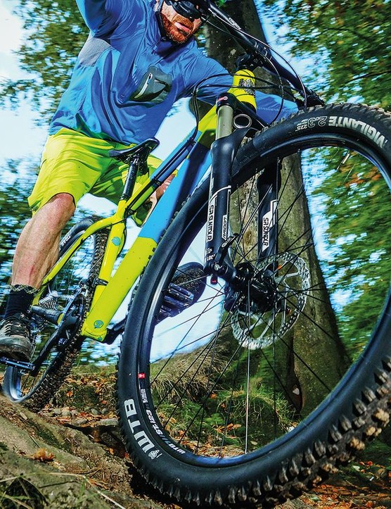 Which tire is best for winter mountain biking?