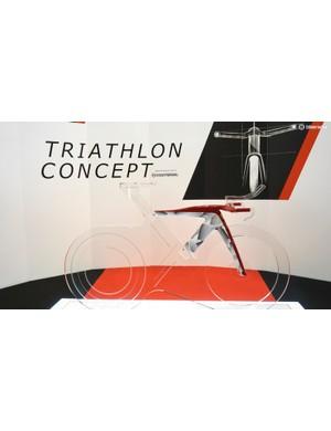 Bianchi and Ferarri are just beginning collaborative work on a triathlon bike