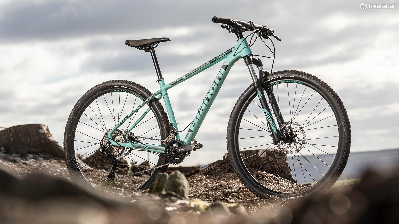 Bianchi's Grizzly 29.3