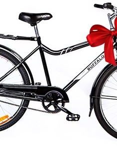 Give a Buffalo Bike this season