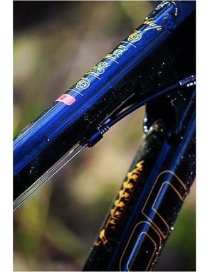Seb Rogers©. Bionicon Golden Willow