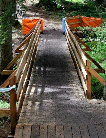 Bridge to more roots